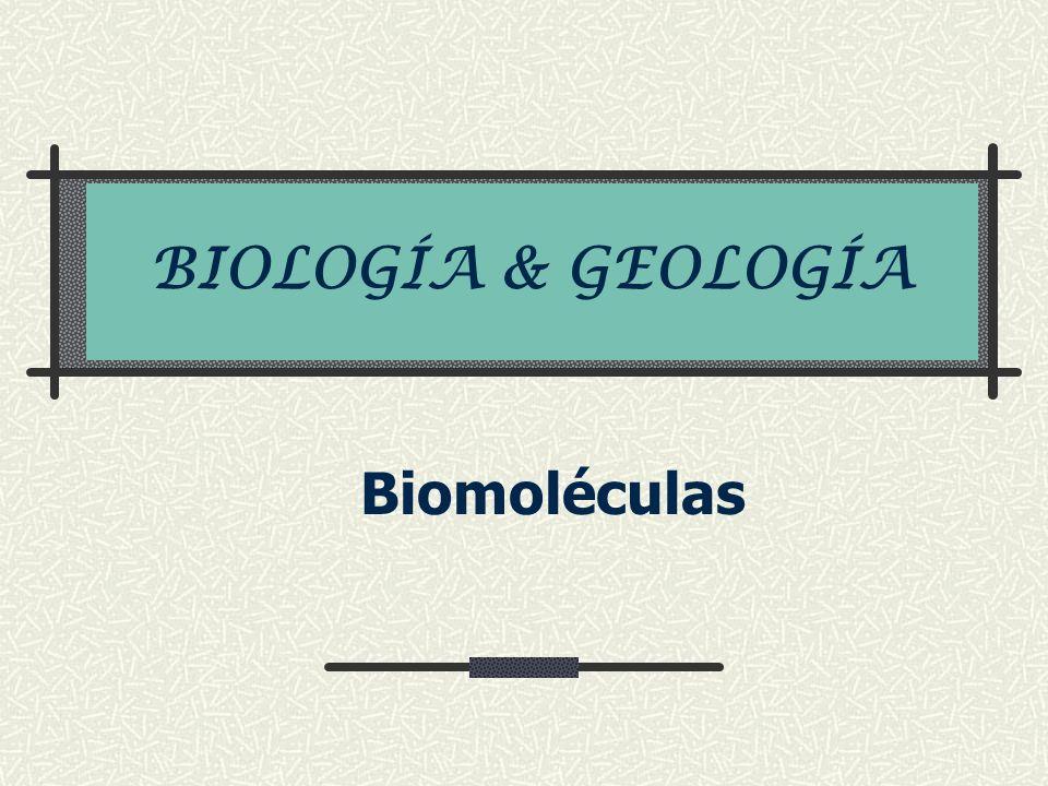 BIOLOGÍA & GEOLOGÍA Biomoléculas