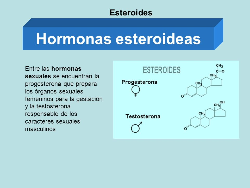 Hormonas esteroideas Esteroides