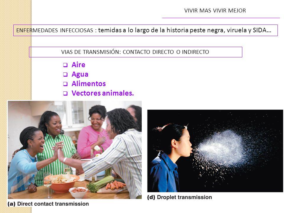 VIAS DE TRANSMISIÓN: CONTACTO DIRECTO O INDIRECTO