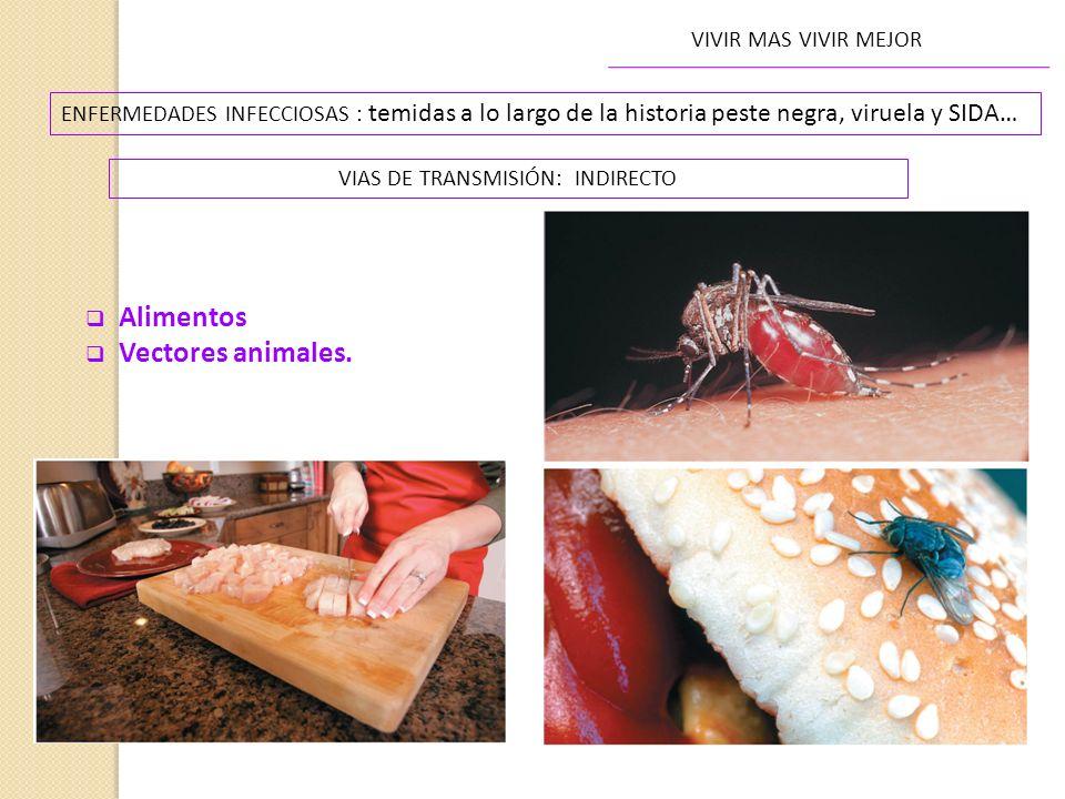 VIAS DE TRANSMISIÓN: INDIRECTO