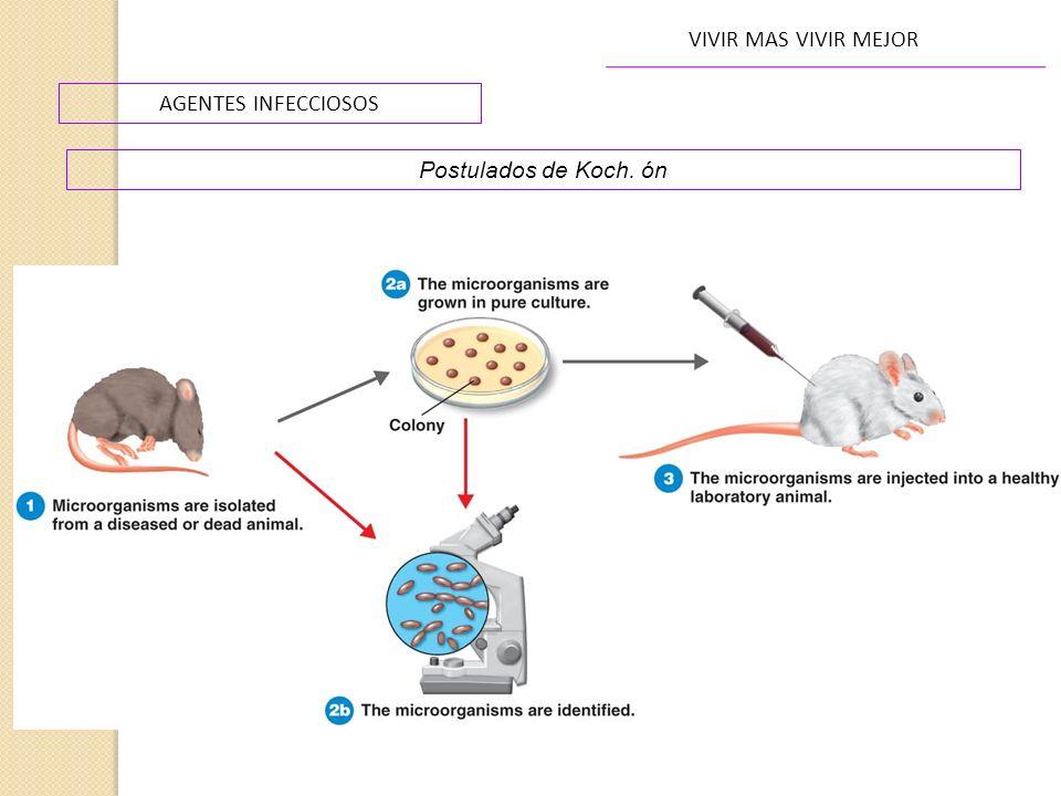 VIVIR MAS VIVIR MEJOR AGENTES INFECCIOSOS Postulados de Koch. ón