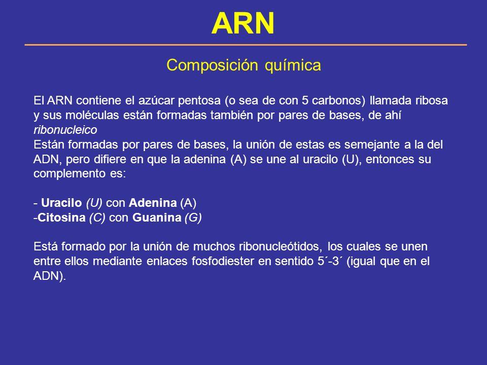 ARN Composición química