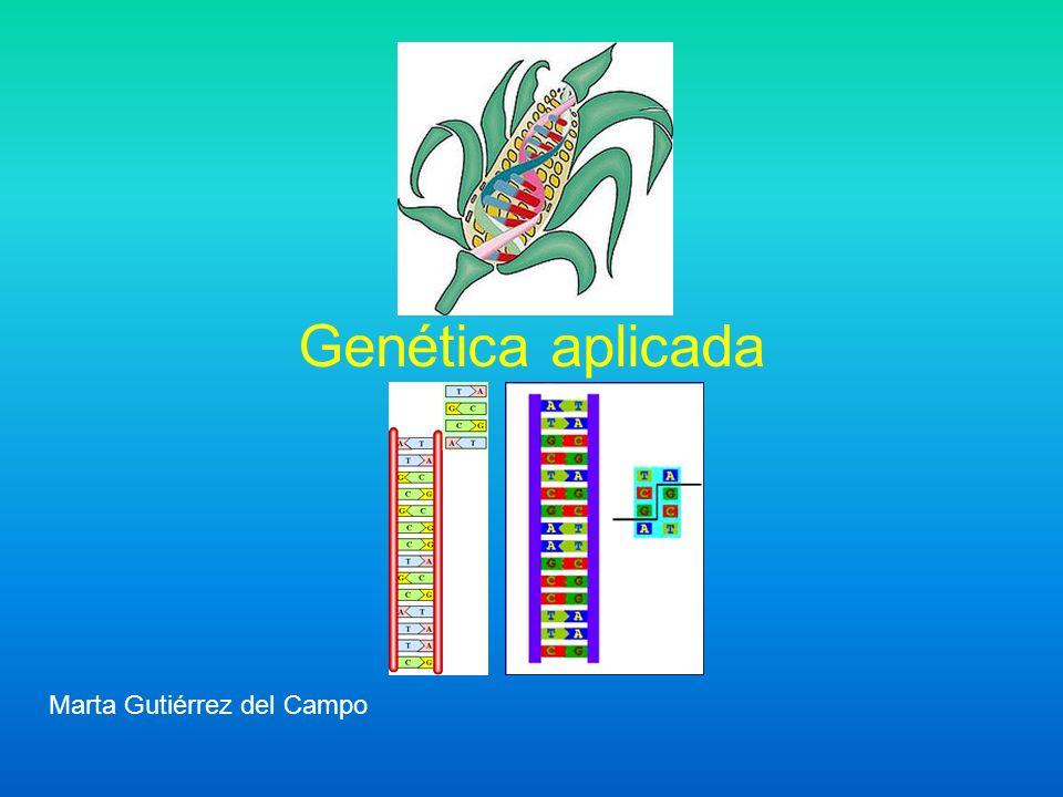 Genética aplicada Marta Gutiérrez del Campo
