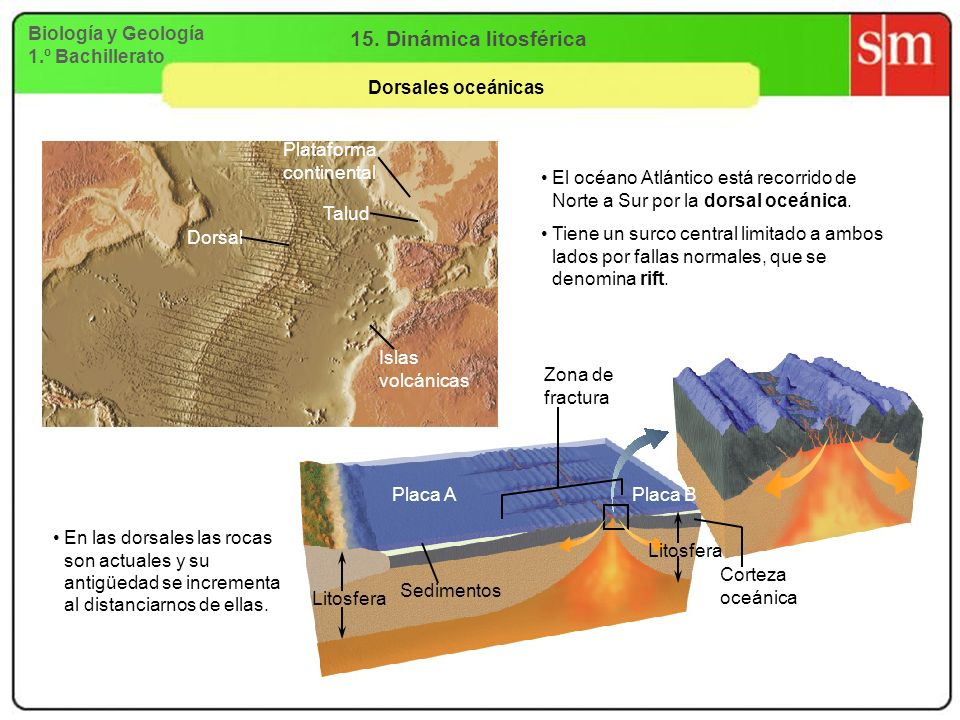 15. Dinámica litosférica Biología y Geología 1.º Bachillerato
