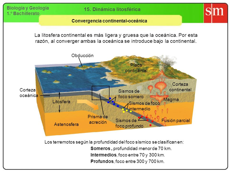 Convergencia continental-oceánica
