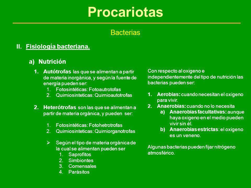 Procariotas Bacterias Fisiología bacteriana. Nutrición