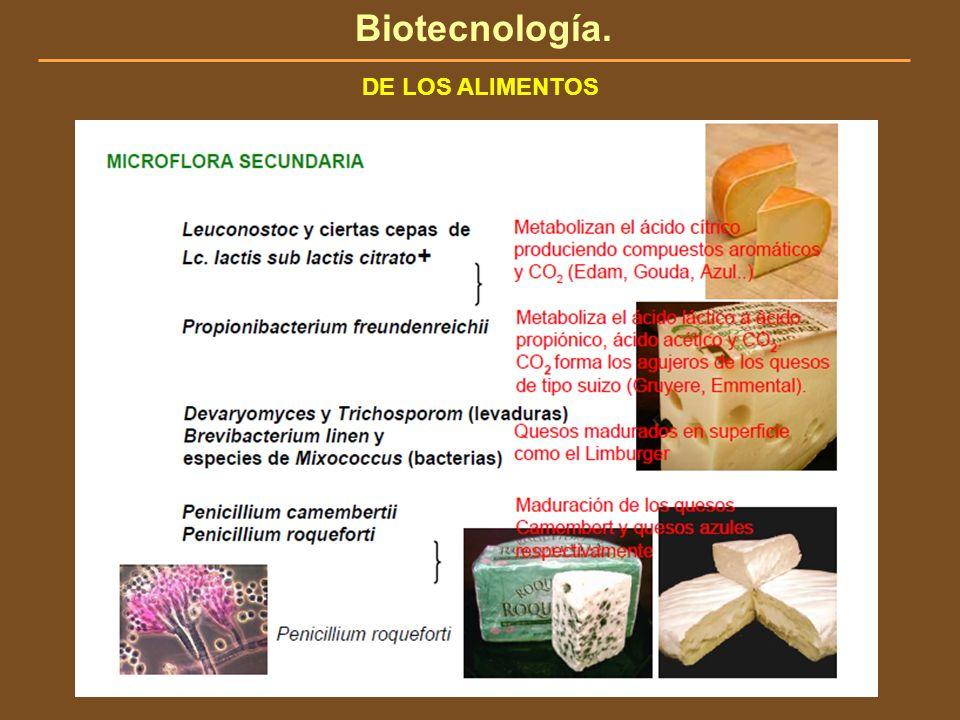 Biotecnología. DE LOS ALIMENTOS