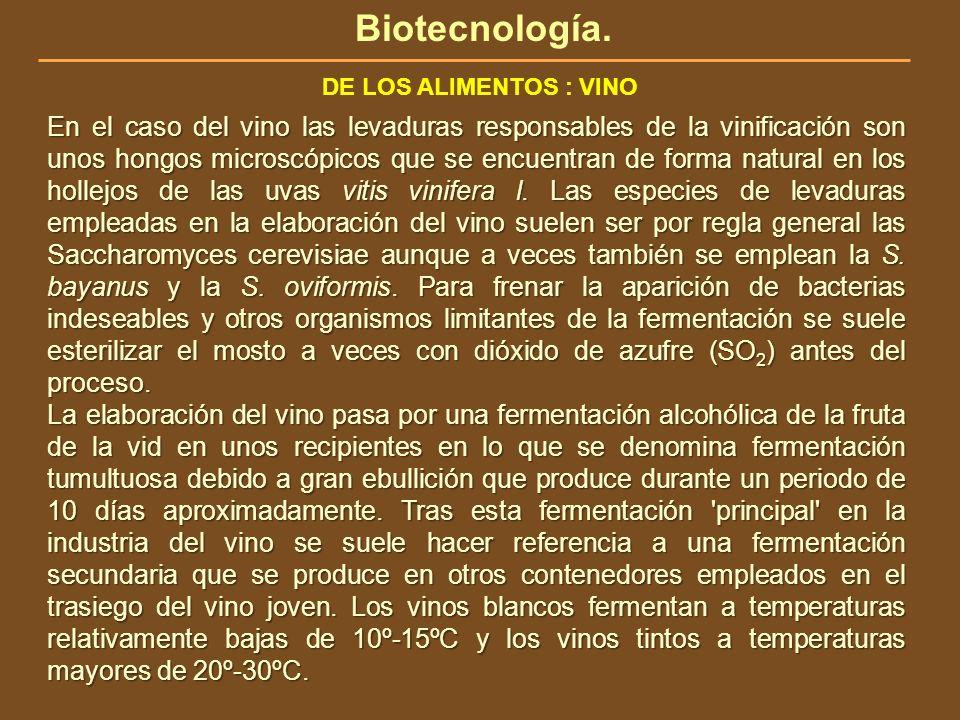 Biotecnología. DE LOS ALIMENTOS : VINO.