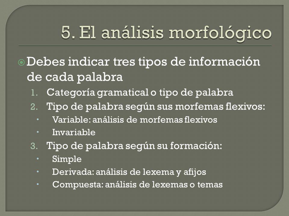 5. El análisis morfológico