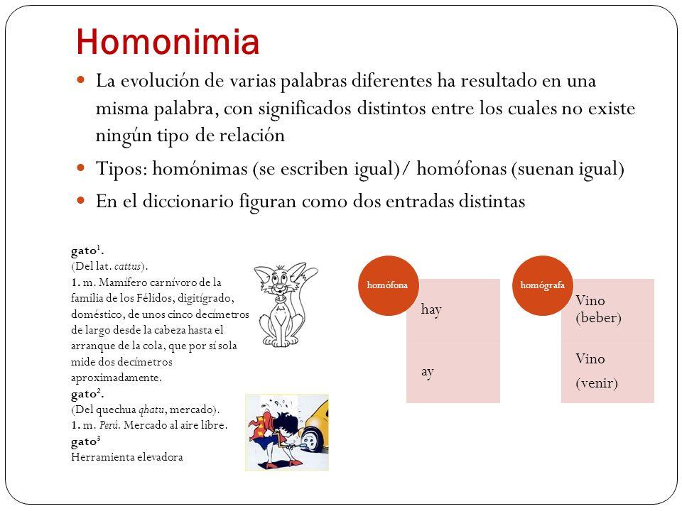 Homonimia