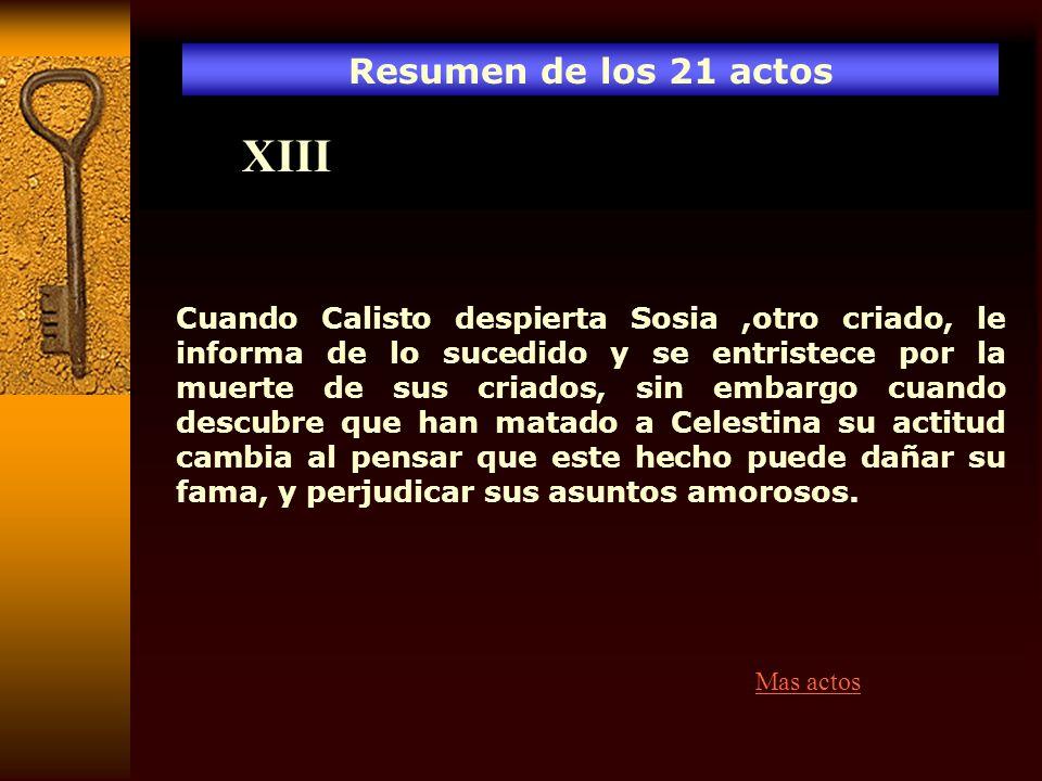 XIII Resumen de los 21 actos