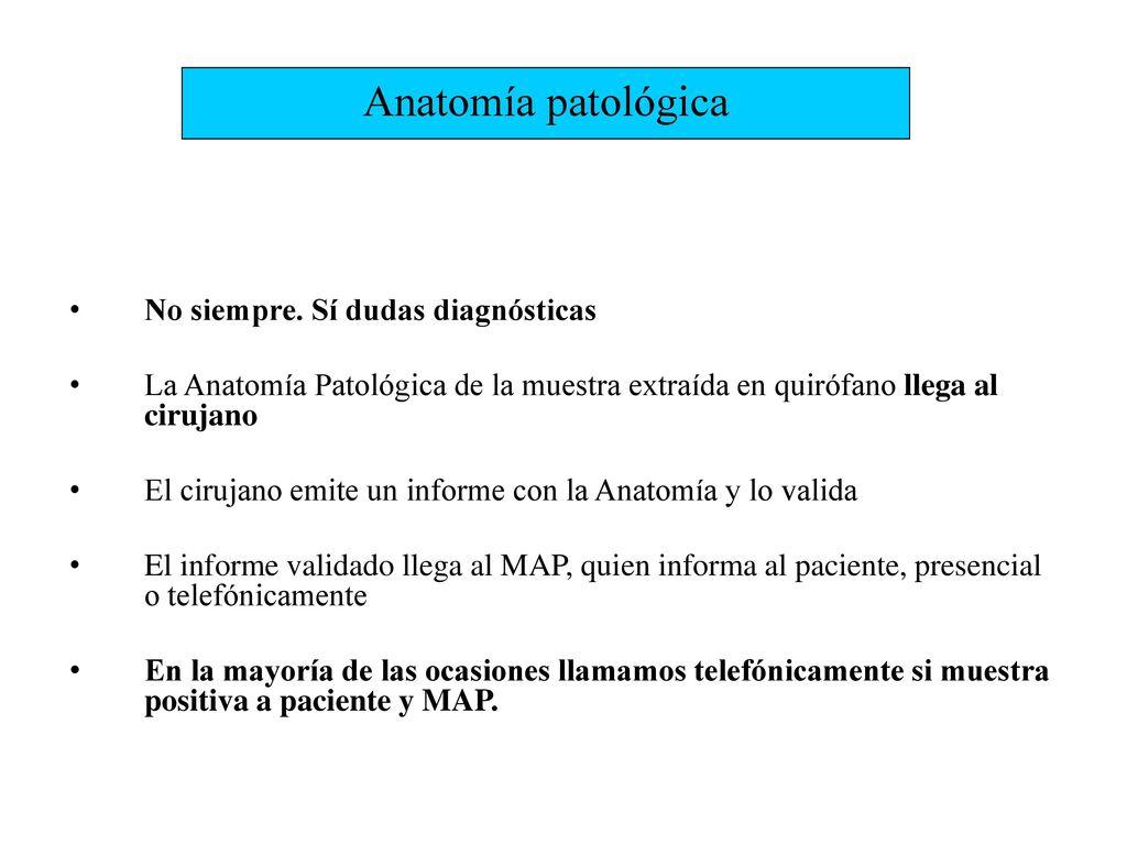 Dorable Pulgar Anatomía Mri Inspiración - Anatomía de Las ...