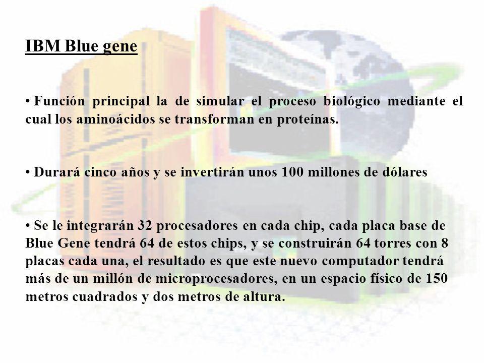 IBM Blue geneFunción principal la de simular el proceso biológico mediante el cual los aminoácidos se transforman en proteínas.