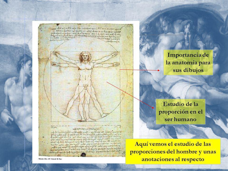 Importancia de la anatomía para sus dibujos