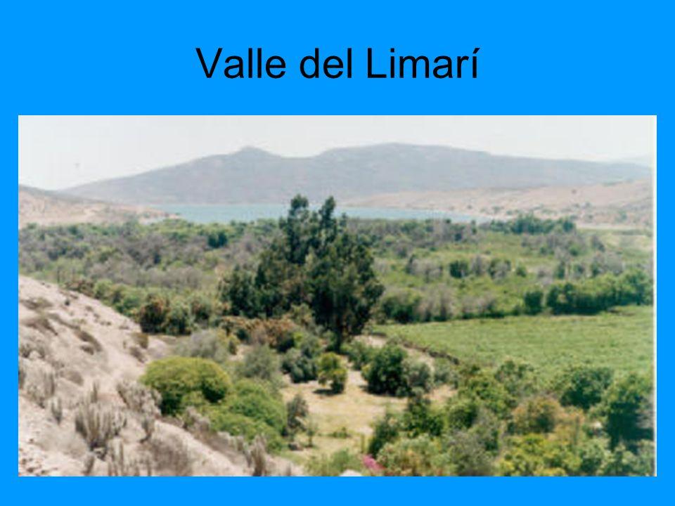 Valle del Limarí