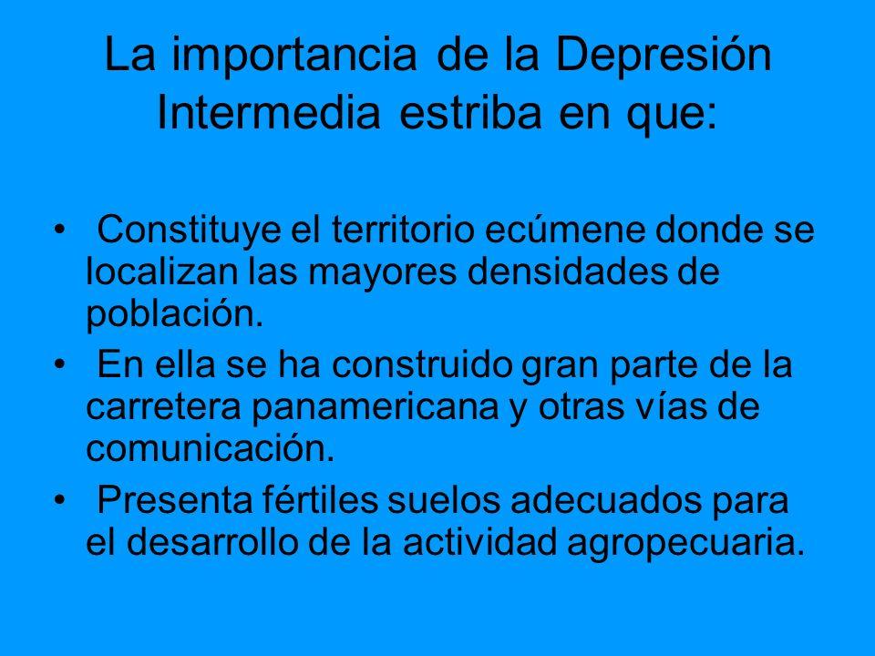 La importancia de la Depresión Intermedia estriba en que:
