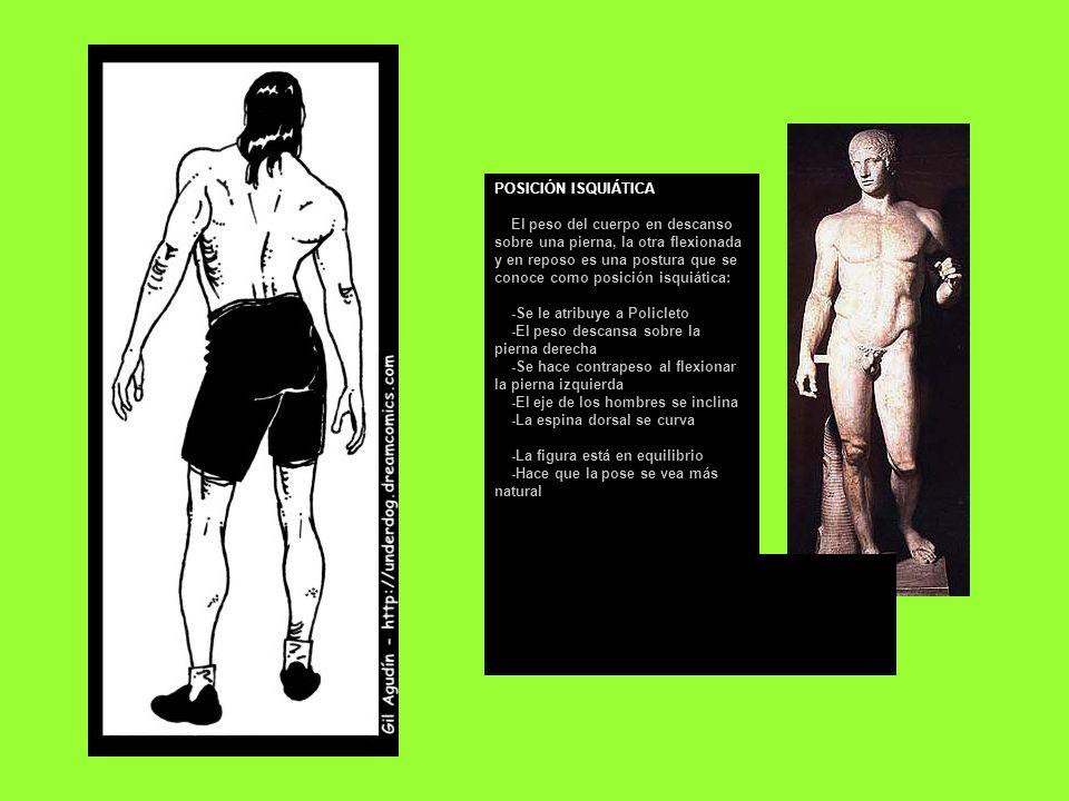 POSICIÓN ISQUIÁTICA El peso del cuerpo en descanso sobre una pierna, la otra flexionada y en reposo es una postura que se conoce como posición isquiática: -Se le atribuye a Policleto -El peso descansa sobre la pierna derecha -Se hace contrapeso al flexionar la pierna izquierda -El eje de los hombres se inclina -La espina dorsal se curva