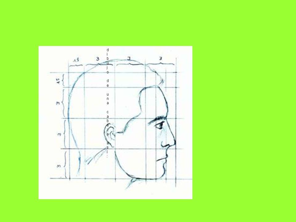 dibujo de una cabeza así: