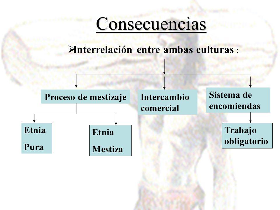 Interrelación entre ambas culturas :