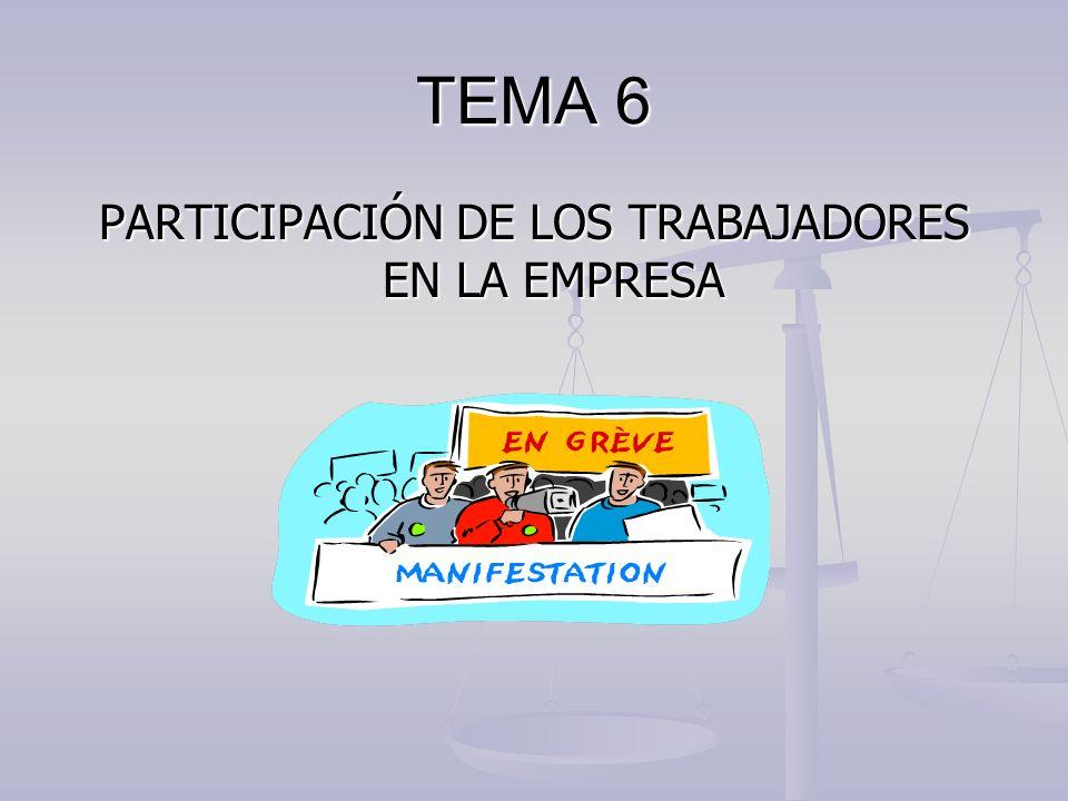 PARTICIPACIÓN DE LOS TRABAJADORES EN LA EMPRESA