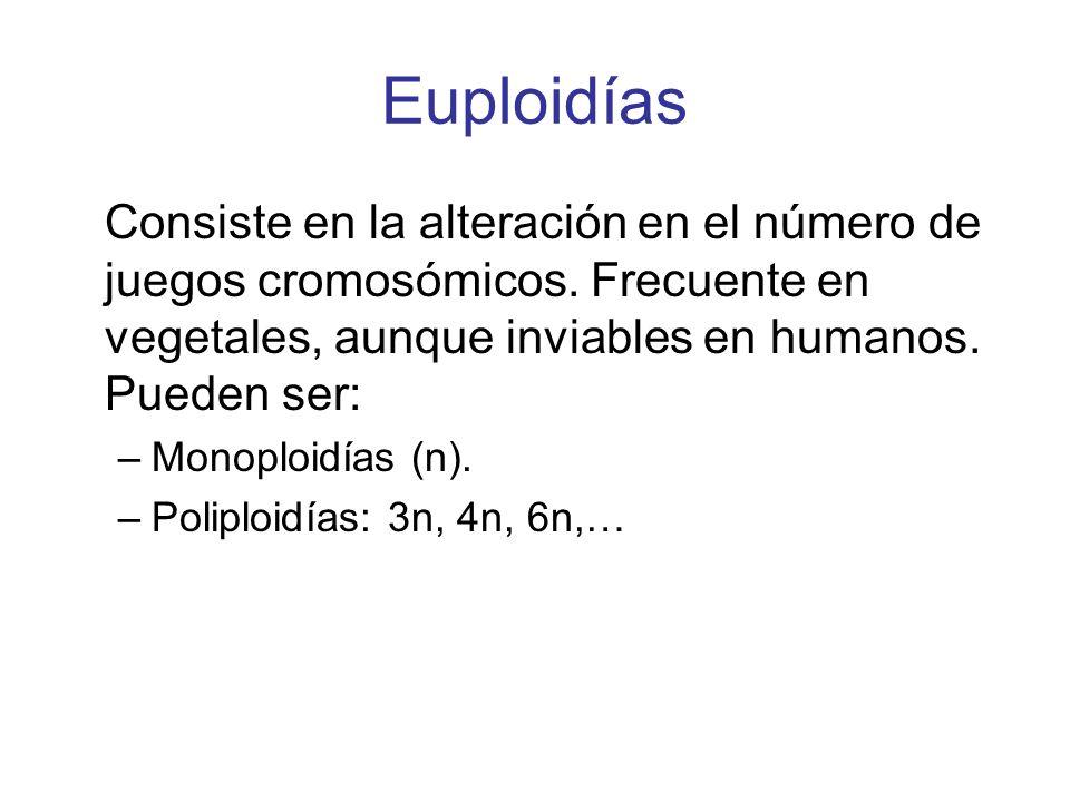 EuploidíasConsiste en la alteración en el número de juegos cromosómicos. Frecuente en vegetales, aunque inviables en humanos. Pueden ser: