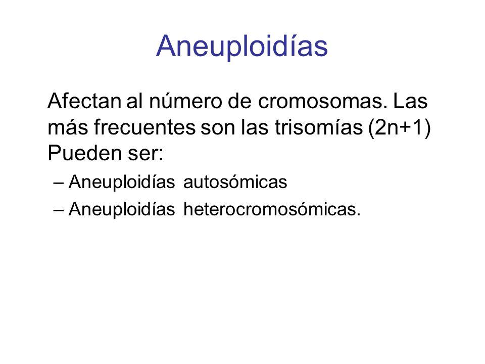 AneuploidíasAfectan al número de cromosomas. Las más frecuentes son las trisomías (2n+1) Pueden ser: