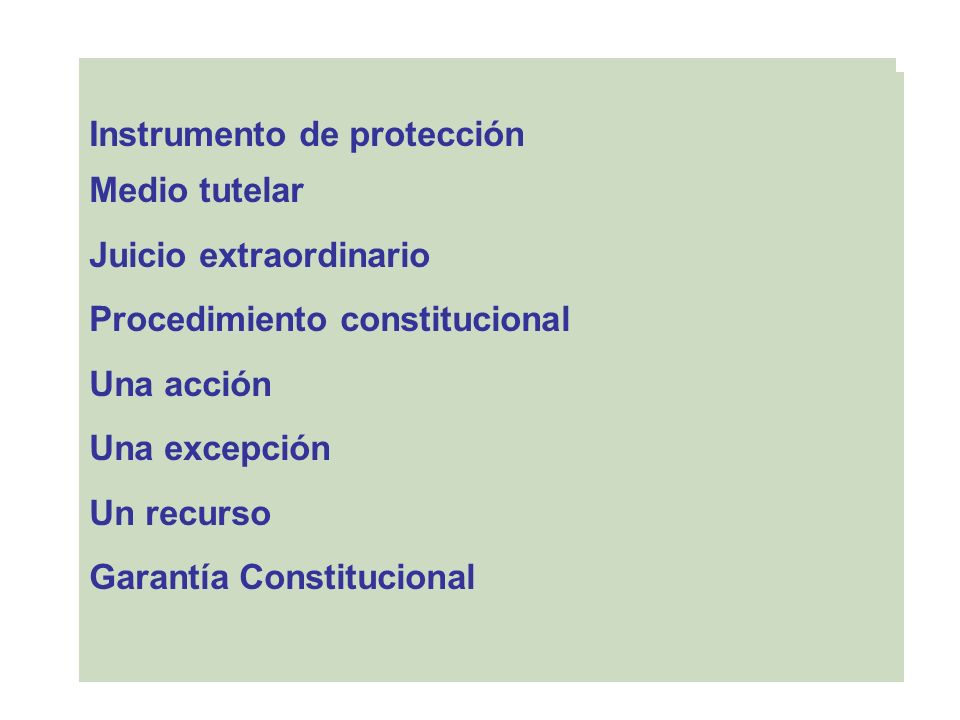Instrumento de protección Medio tutelar Juicio extraordinario