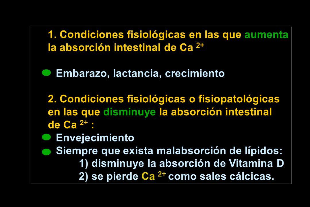 1. Condiciones fisiológicas en las que aumenta