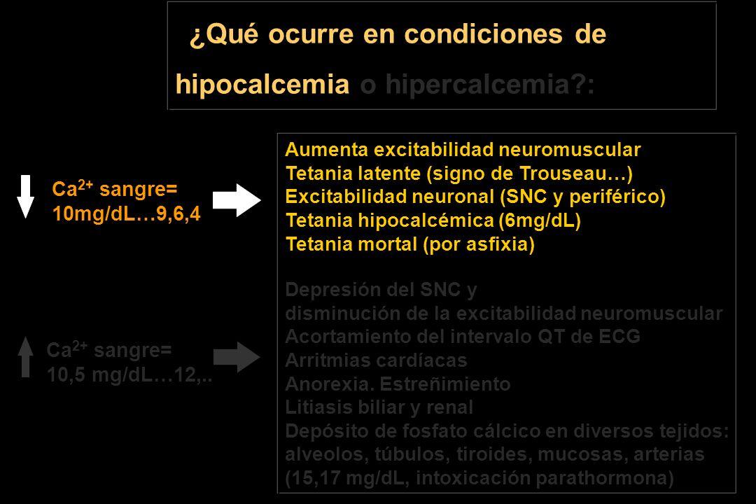¿Qué ocurre en condiciones de hipocalcemia o hipercalcemia :