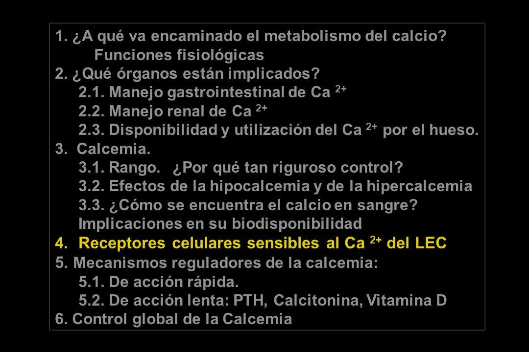 5. Mecanismos reguladores de la calcemia: