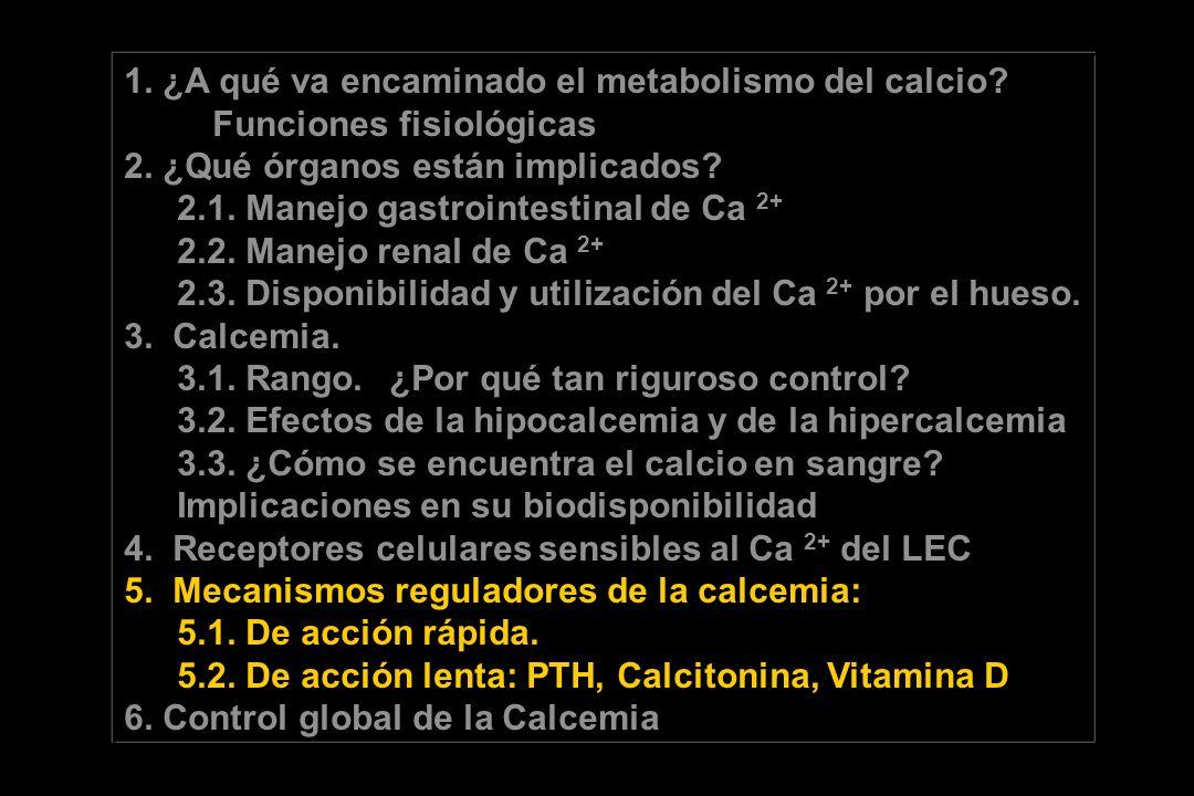 1. ¿A qué va encaminado el metabolismo del calcio