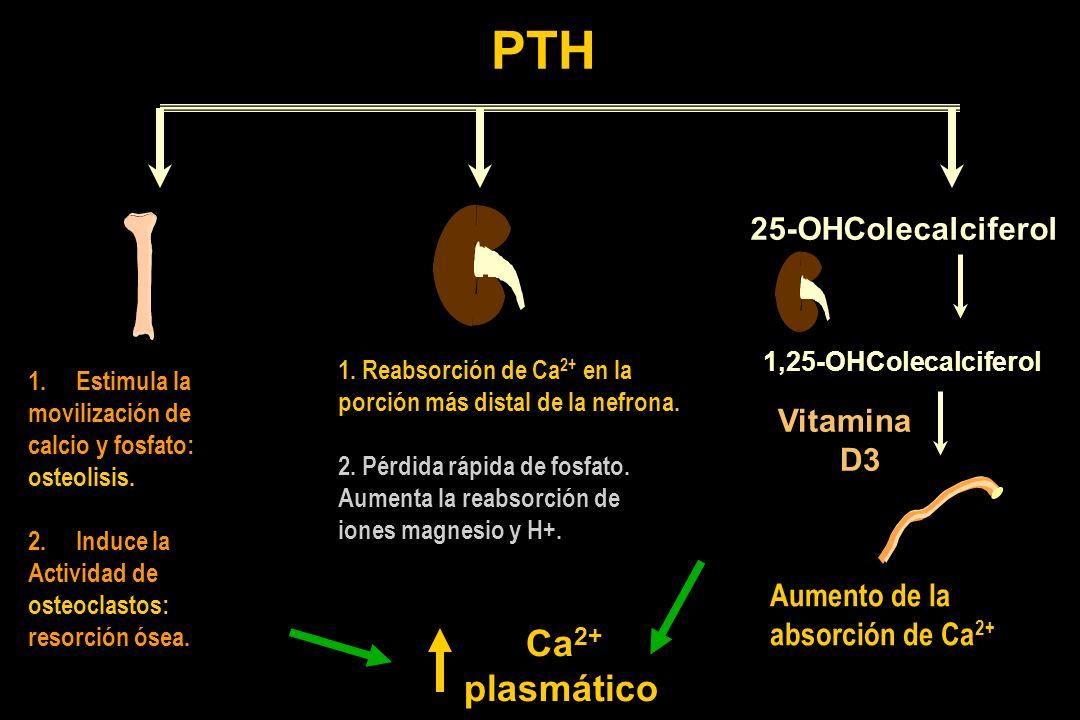 PTH Ca2+ plasmático 25-OHColecalciferol Vitamina D3 Aumento de la