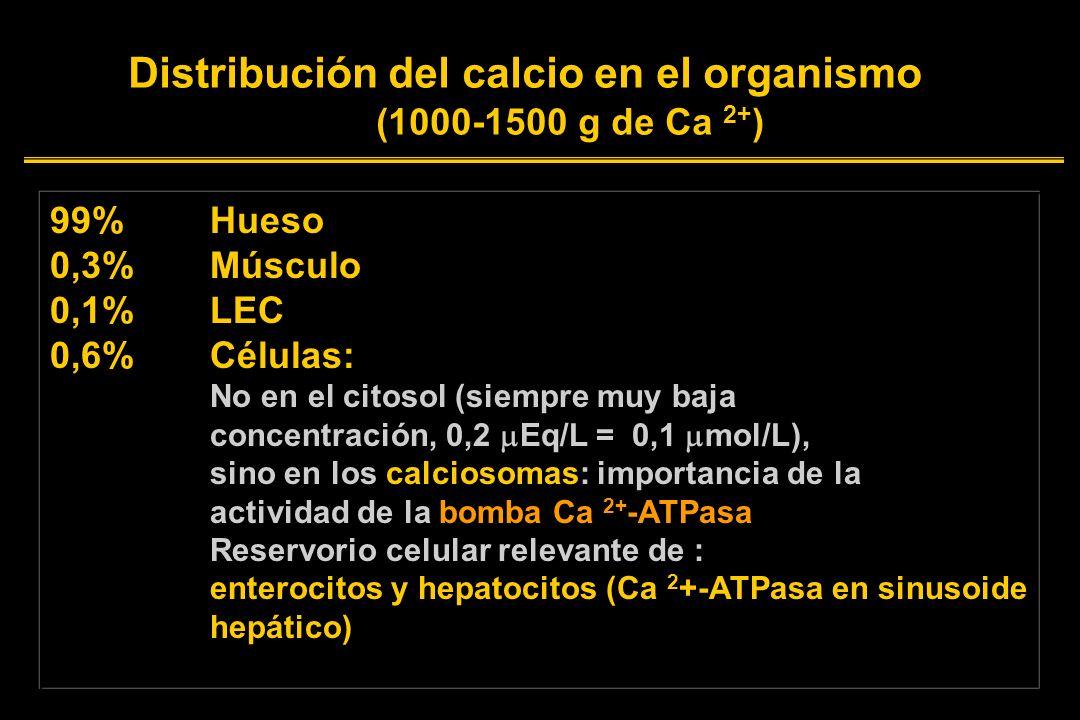 Distribución del calcio en el organismo