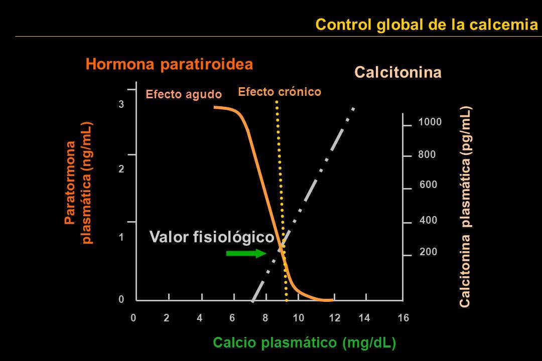 Control global de la calcemia