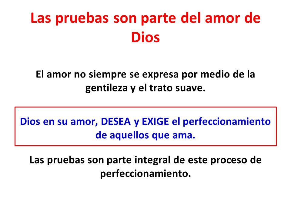 Las pruebas son parte del amor de Dios