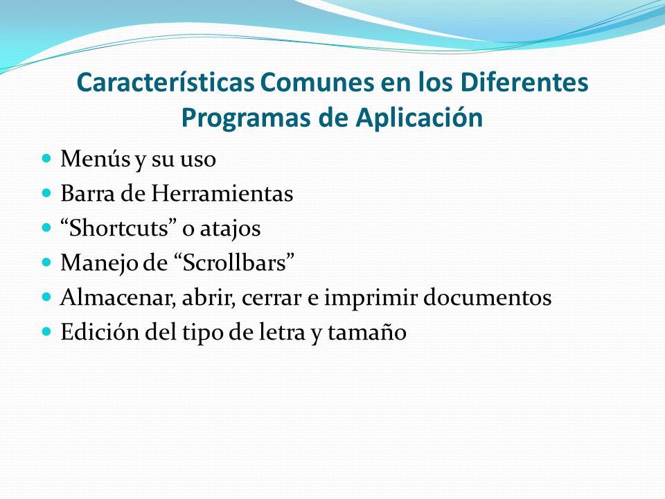 Características Comunes en los Diferentes Programas de Aplicación