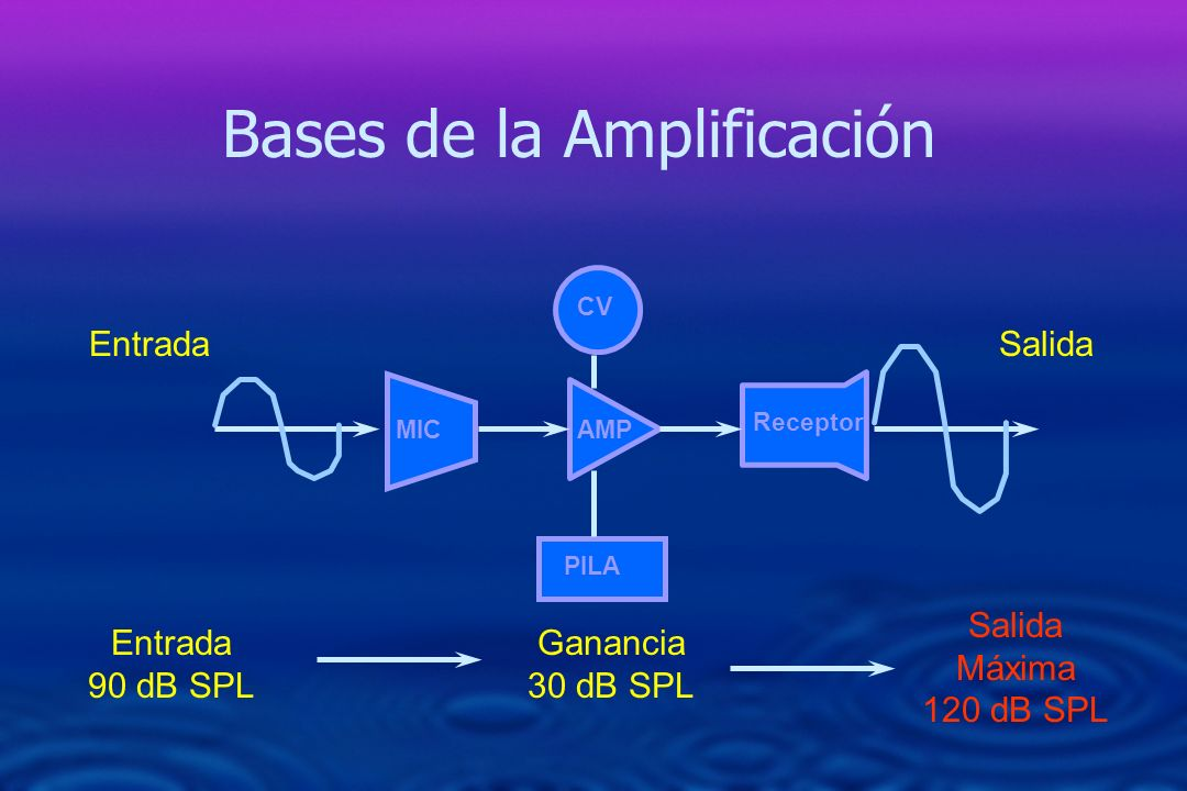 Bases de la Amplificación