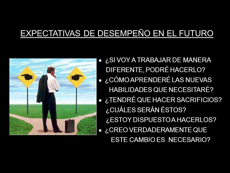 EXPECTATIVAS DE DESEMPEÑO EN EL FUTURO