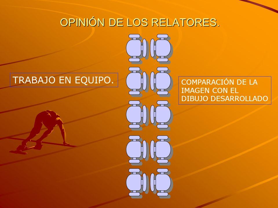 OPINIÓN DE LOS RELATORES.