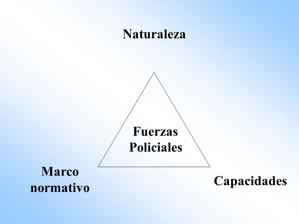 Naturaleza Fuerzas Policiales Marco normativo Capacidades