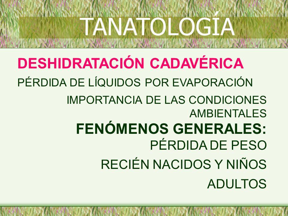 TANATOLOGÍA DESHIDRATACIÓN CADAVÉRICA RECIÉN NACIDOS Y NIÑOS ADULTOS