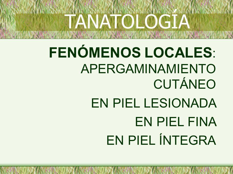 TANATOLOGÍA FENÓMENOS LOCALES: APERGAMINAMIENTO CUTÁNEO