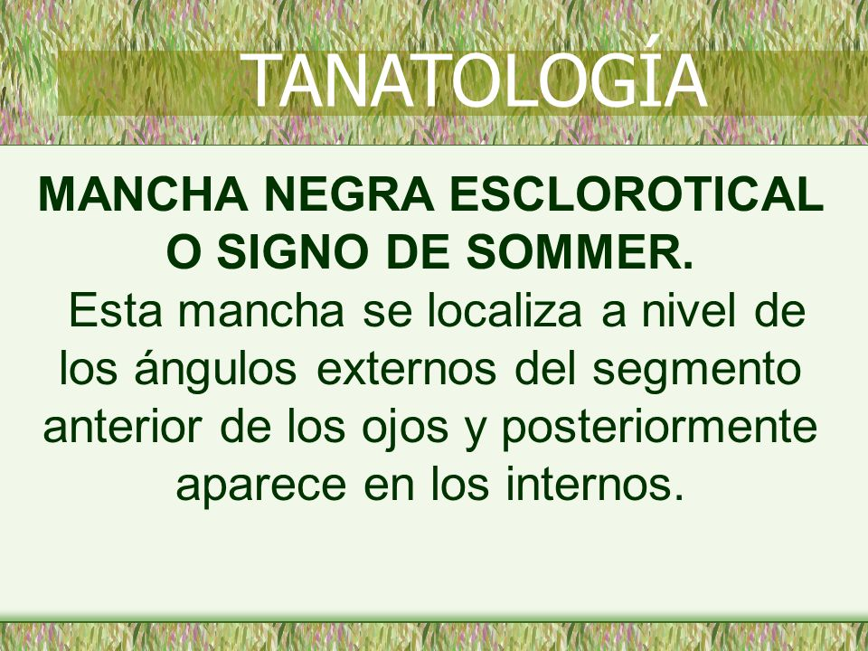 MANCHA NEGRA ESCLOROTICAL O SIGNO DE SOMMER.