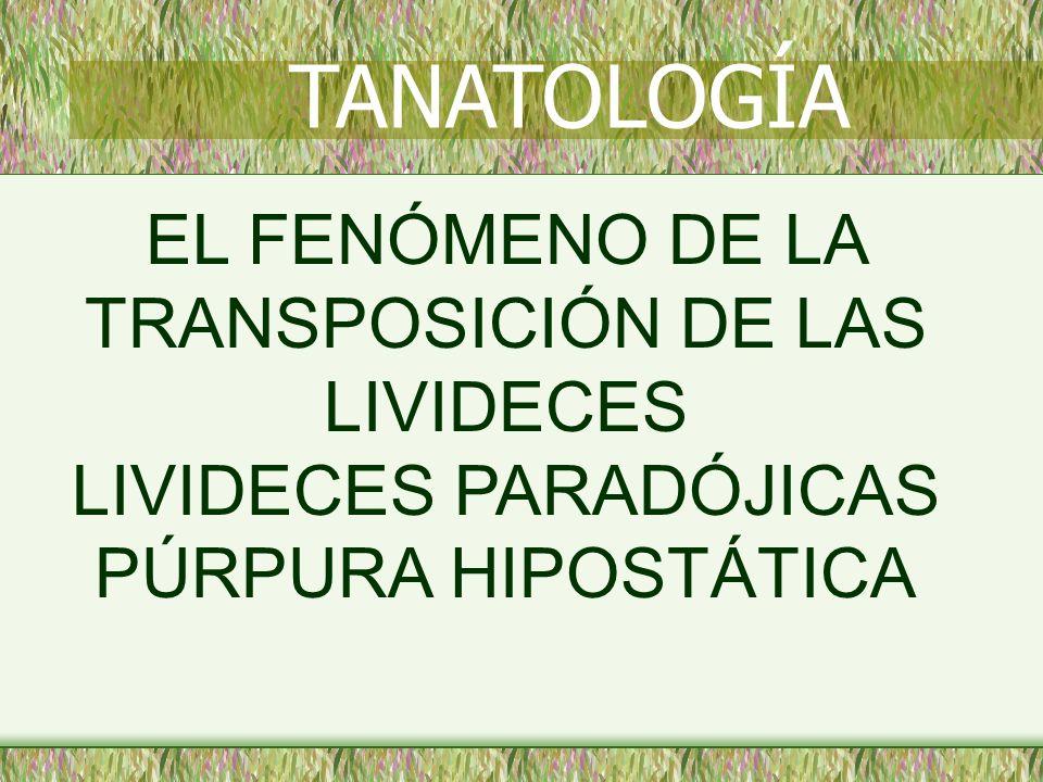 TANATOLOGÍA EL FENÓMENO DE LA TRANSPOSICIÓN DE LAS LIVIDECES LIVIDECES PARADÓJICAS PÚRPURA HIPOSTÁTICA.