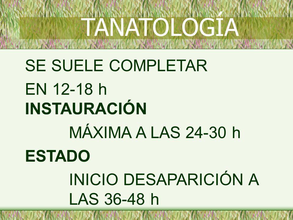 TANATOLOGÍA SE SUELE COMPLETAR EN 12-18 h INSTAURACIÓN