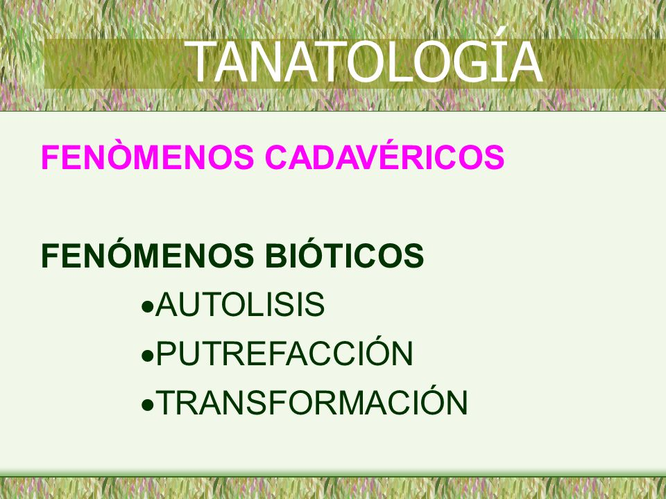 TANATOLOGÍA FENÒMENOS CADAVÉRICOS FENÓMENOS BIÓTICOS AUTOLISIS