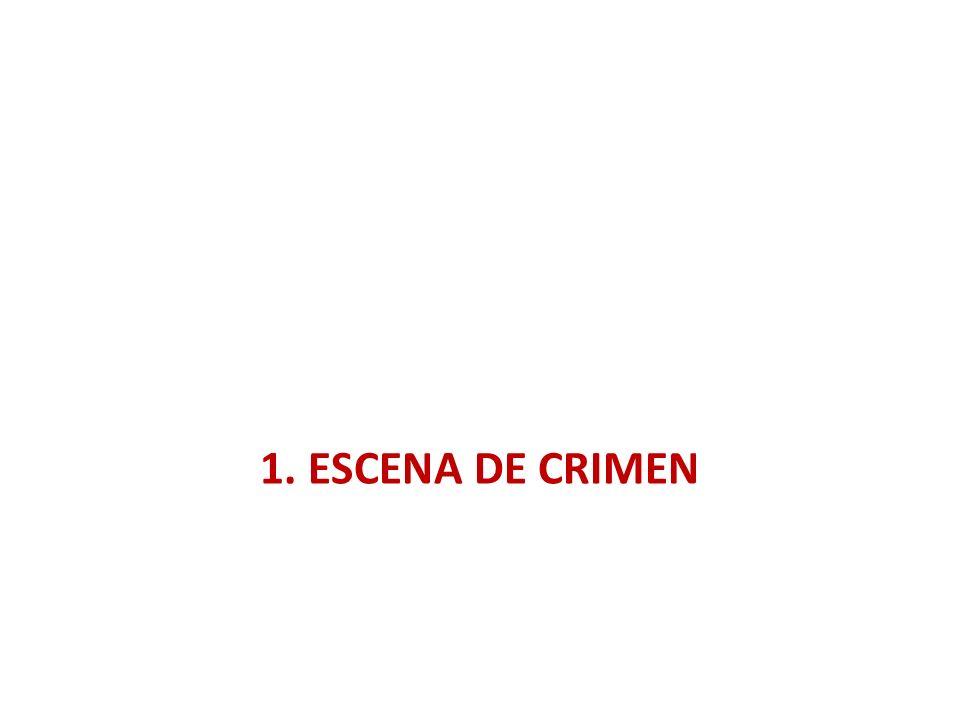 1. ESCENA DE CRIMEN