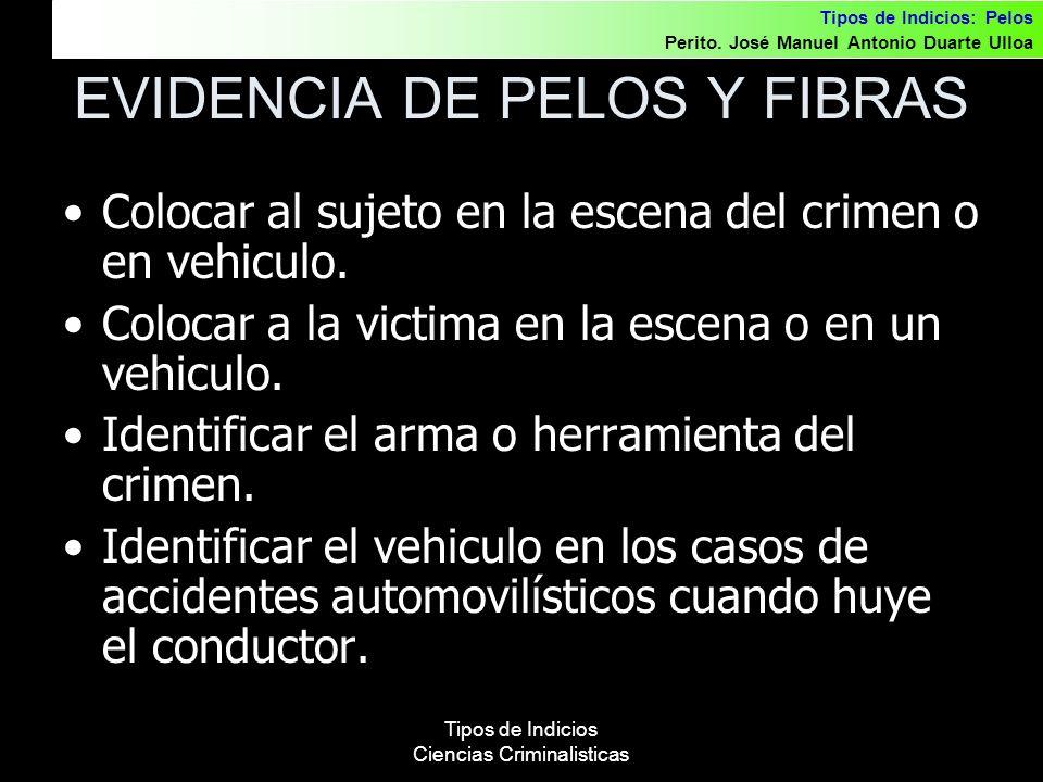 EVIDENCIA DE PELOS Y FIBRAS