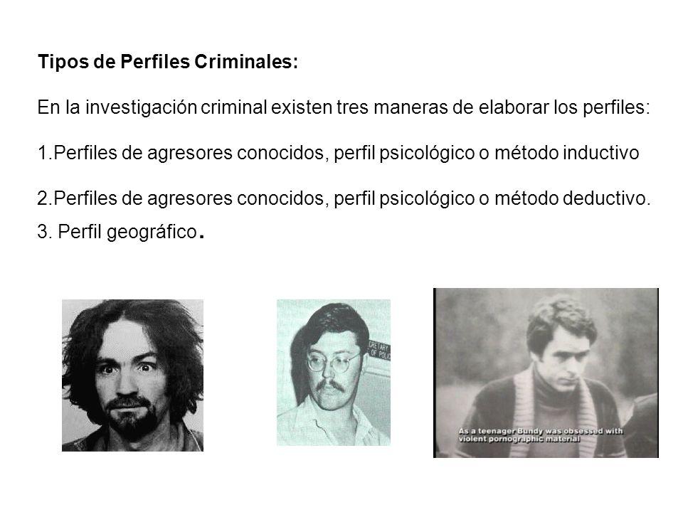 Tipos de Perfiles Criminales: