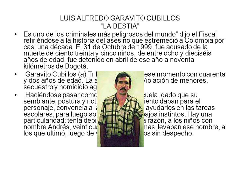 LUIS ALFREDO GARAVITO CUBILLOS